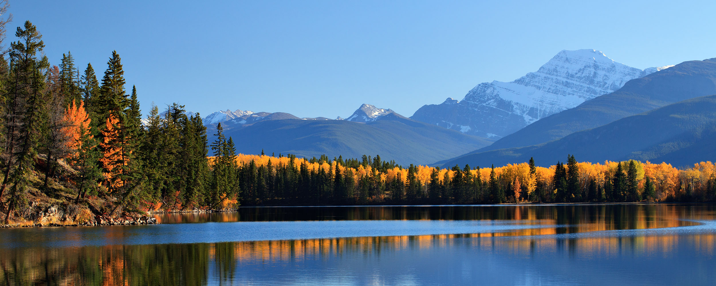 Fall colours around a lake in Jasper National Park