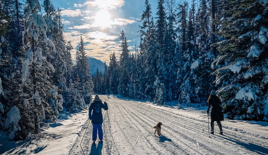 Cross-Country-Skiing-at-Whirpool-Trail
