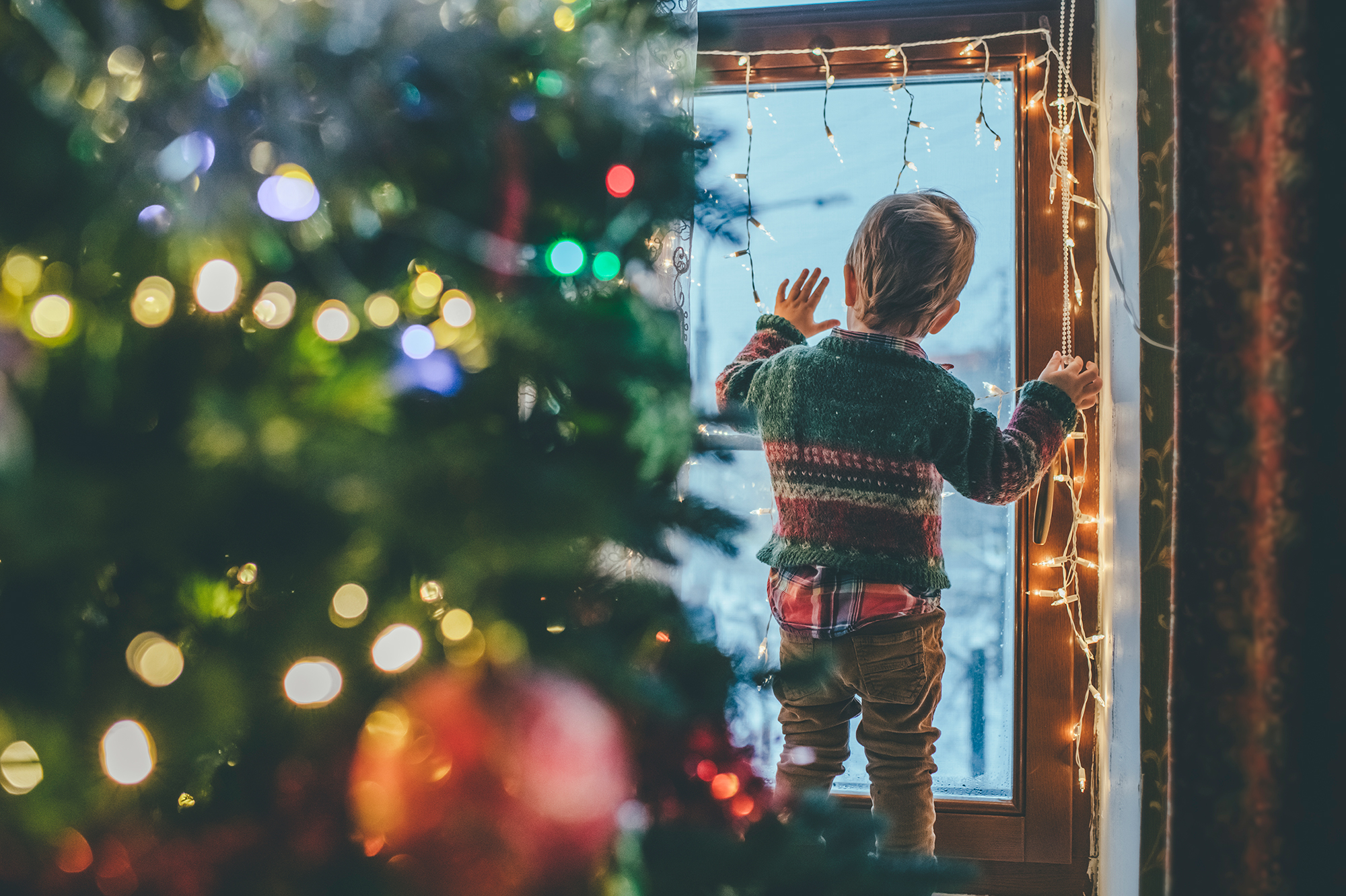 Little Boy Looking out the window at Christmas